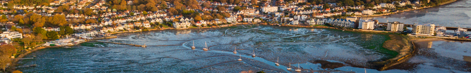 Poole Harbour macroalgal harvest – pilot study design