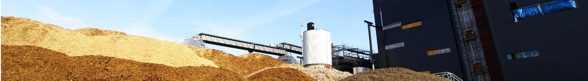 The 4 key factors for biomass CHP success