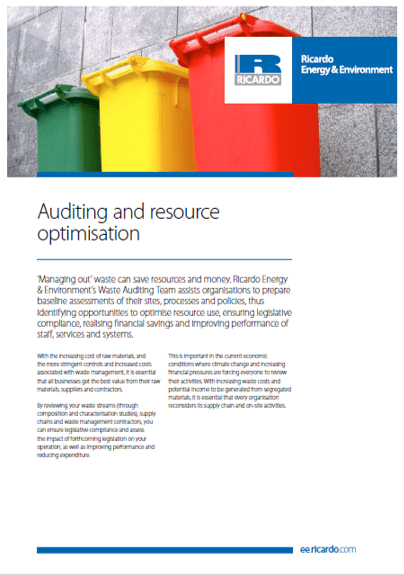 Auditing and resource optimisation capability statement
