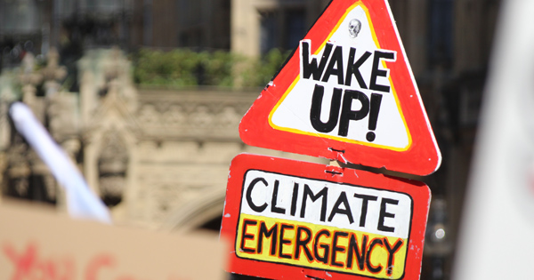 Free webinar: The top 10 lessons for local authority climate emergency planning