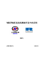 Application in combustion system development using VECTIS